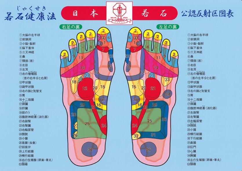 若石健康法の足もみ / 反射区