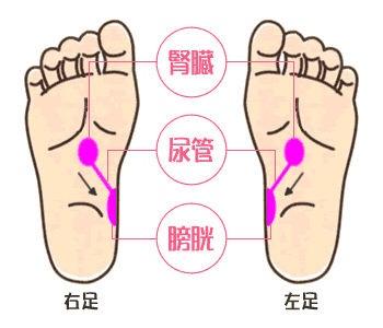足裏デトックスで痩せやすい体質に🍀